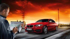 BMW Klima Check / Service